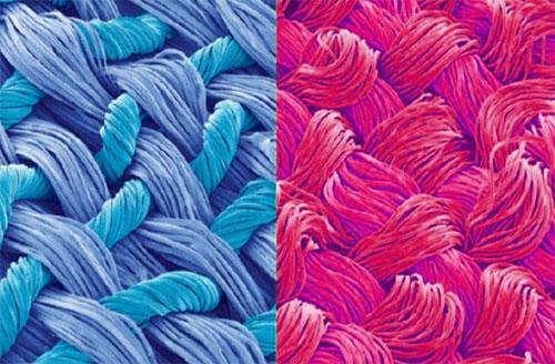 Fibra têxtil – CO, CL, WO, SK, CV, PAC, PUE, PES, PA, PP, PUR, PET
