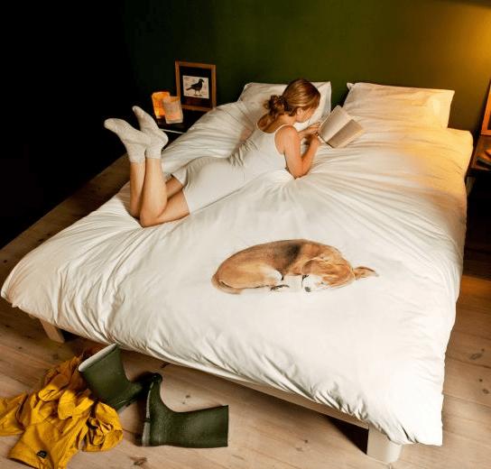 Cobertor com estampa de cachorro deitado.