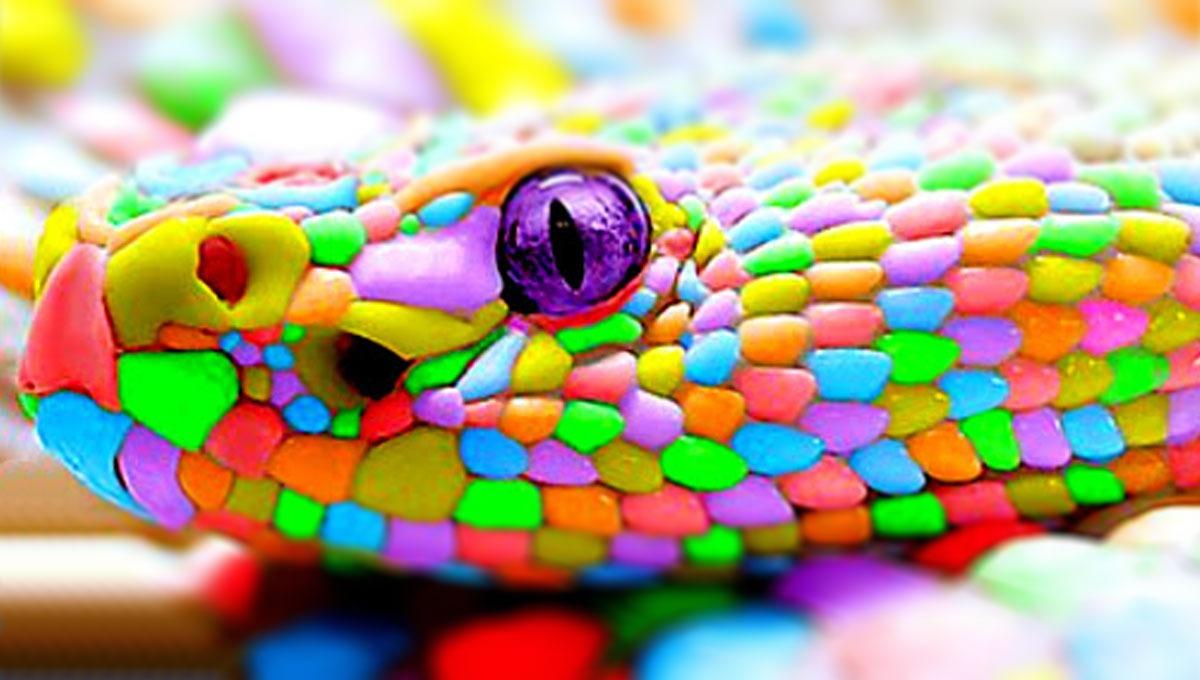 Significados das cores em suas estampas